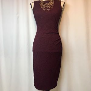 EUC SZ M Caché Sleeveless Ruched Wine 🍷 Dress